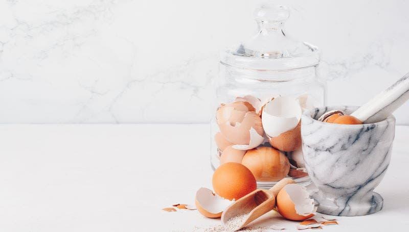 casca de ovo saude beleza
