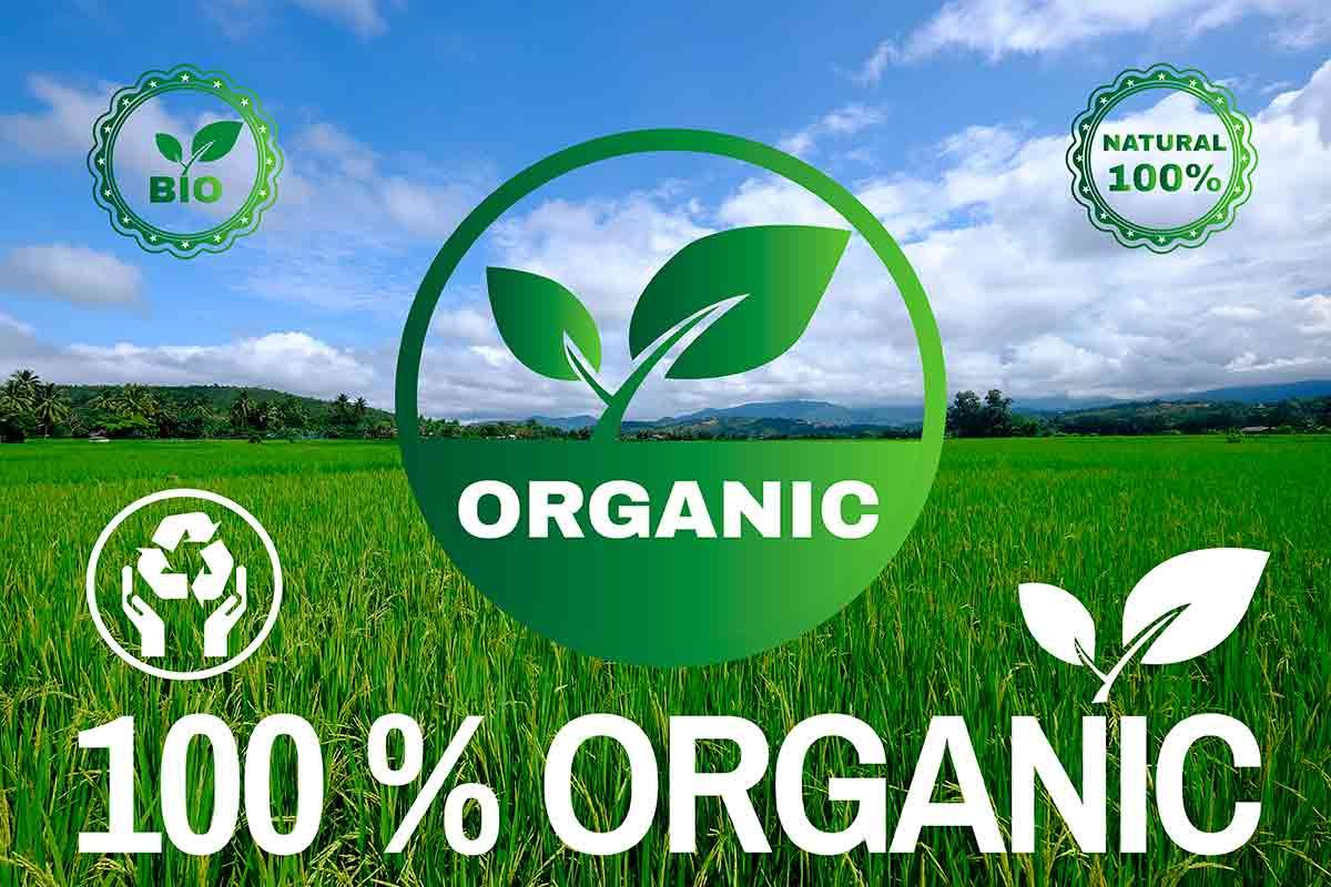 100% orgânico
