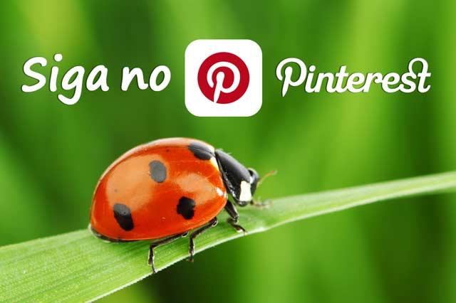 Você está no Pinterest?