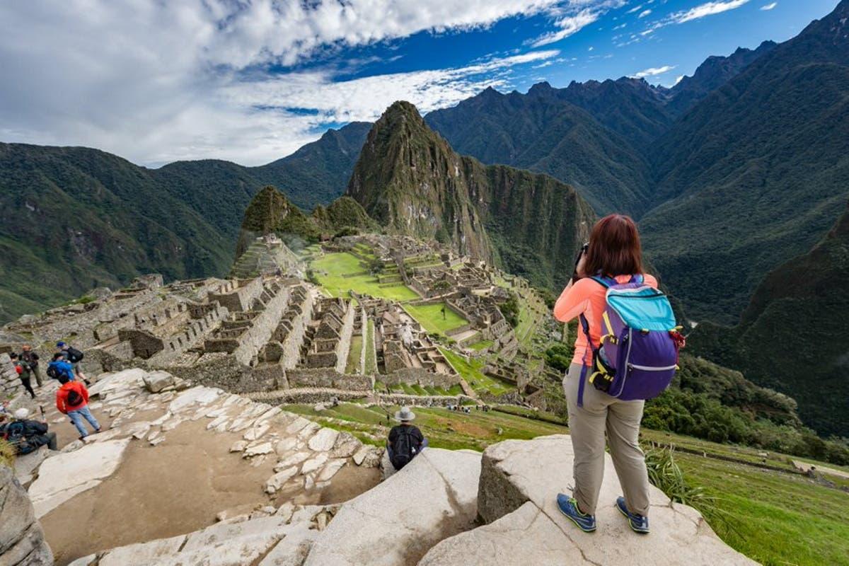 Machu-Picchu-arvores