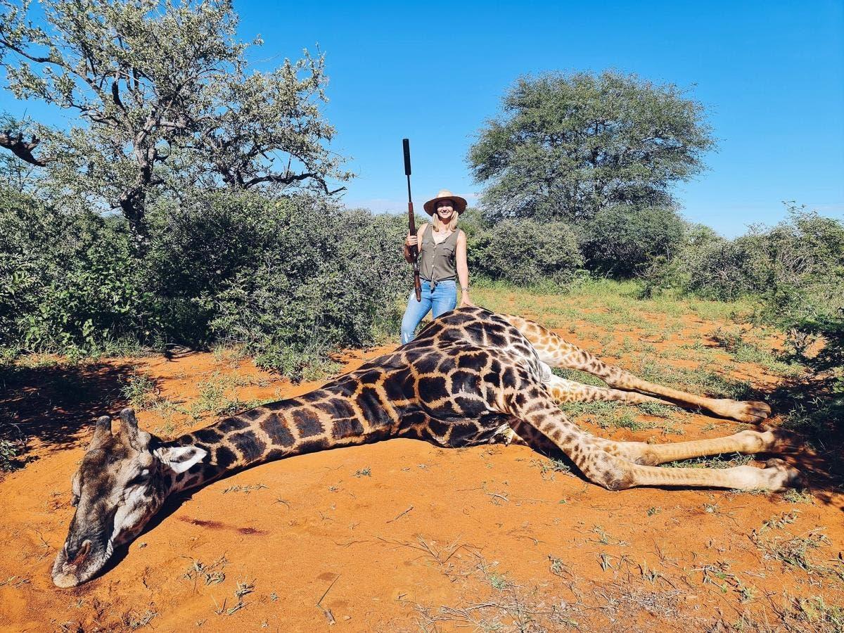 merelize-girafa-negra
