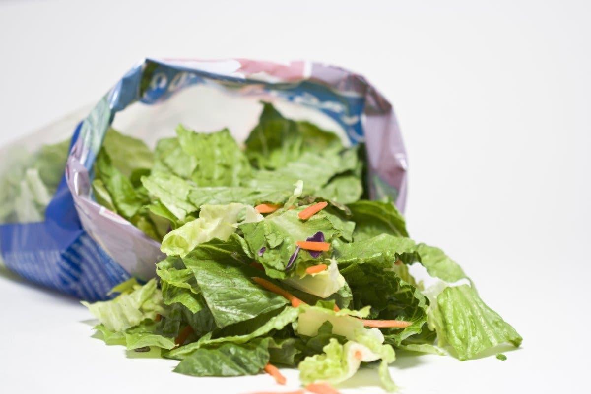 salad-plastico