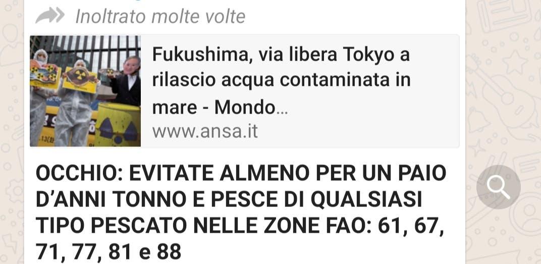 fukushima-whatsapp