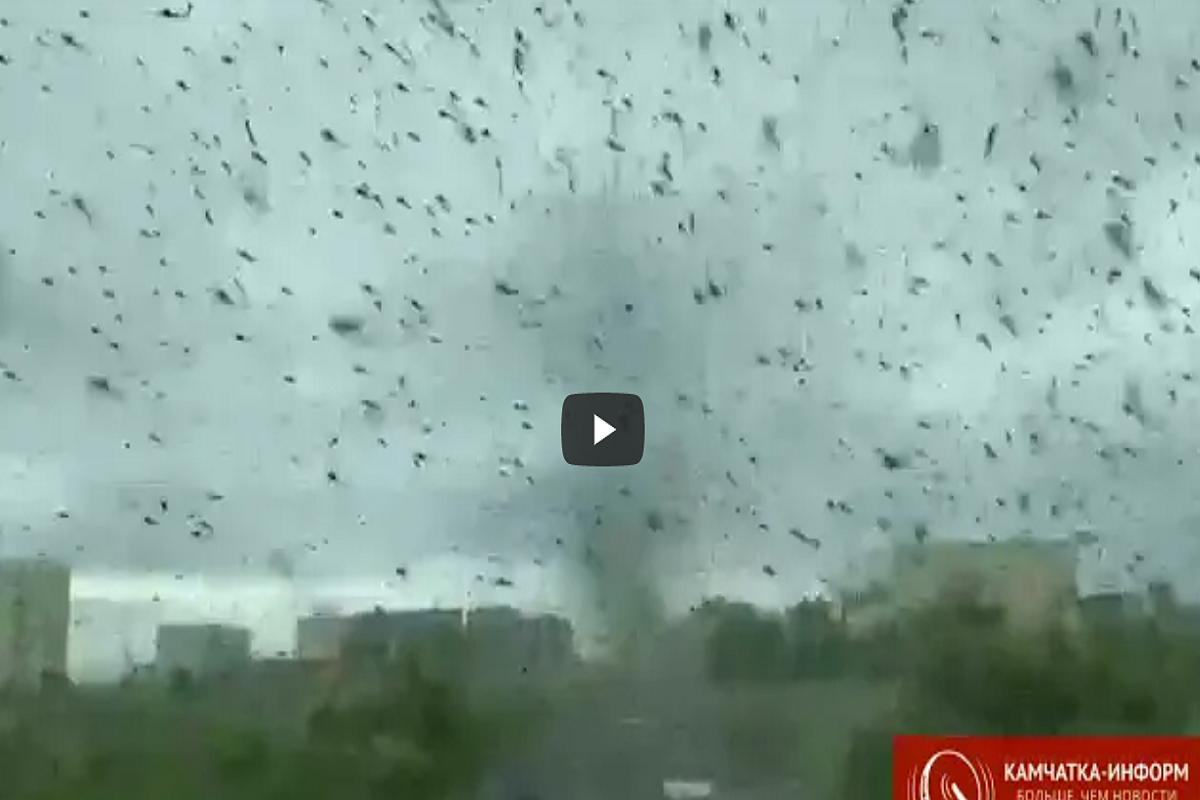 tornado mosquitos