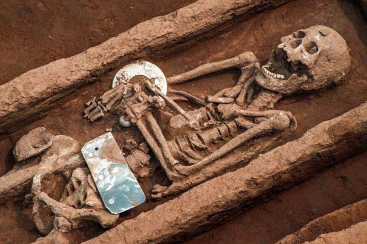 esqueletos-gigantes
